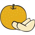 鳥取で梨狩り楽しもう!